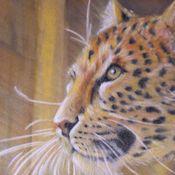 Leopard - pastel