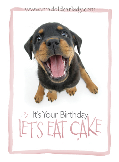 It's Your Birthday, Let's Eat Cake