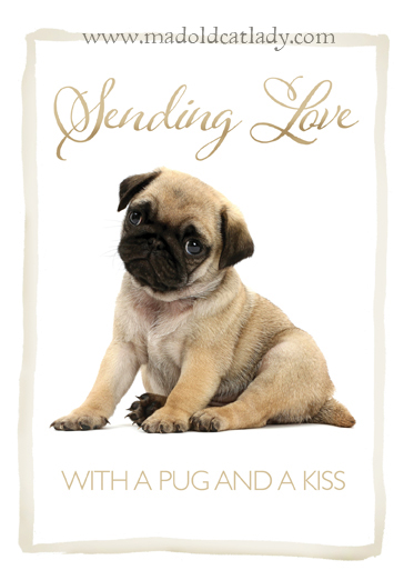 Sending Love With A Pug & Kiss