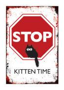 STOP! Kitten time.