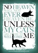 Heaven's Cat Flap