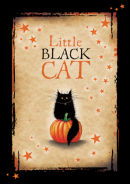 Little Black Cat