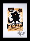 Black Magic Rescue (gold) (approx 280x400)
