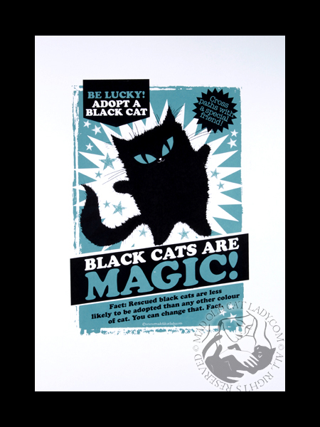 black Magic Rescue (slate blue) (approx 280x400)