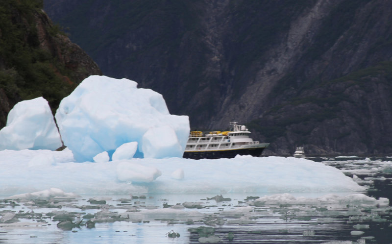 Our ship at Tracy Arm