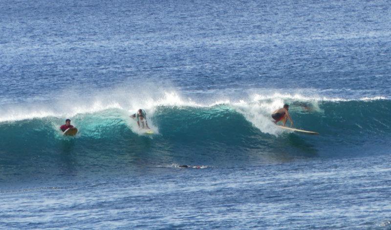 Surf's up !