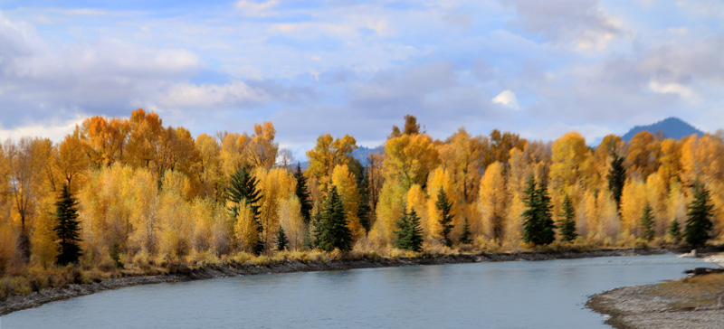 Snake river during the Fall