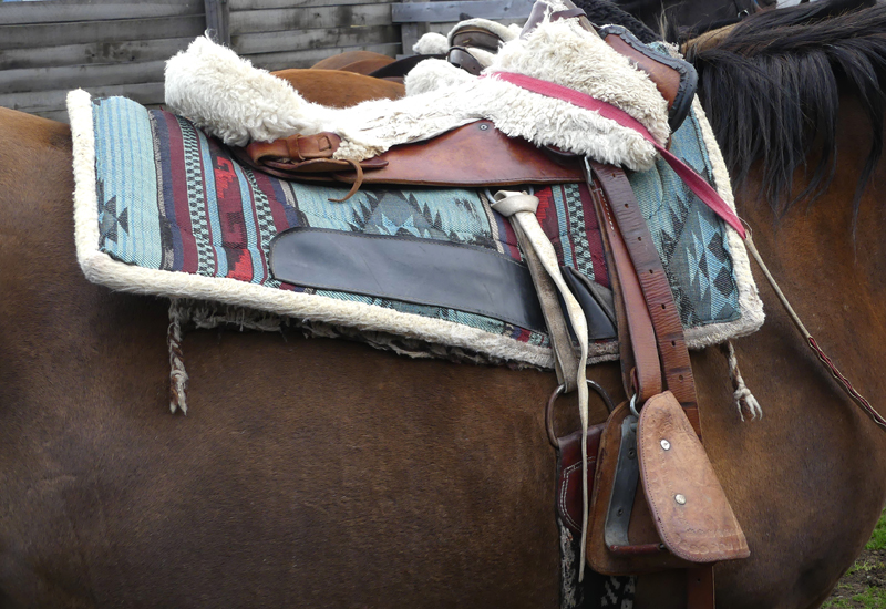 Traditional Chilean saddle