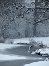 CCP10: Winter Lake
