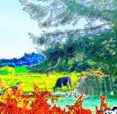 Ceiriog Valley Cow