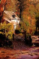 Autumn, Pandy Cottage