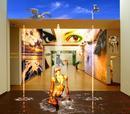 Gallery 5 - Surrealism