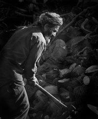 Wood Cutter, Rokhah, Afghanistan