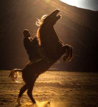 Horseman of the Panjshir, Afghanistan