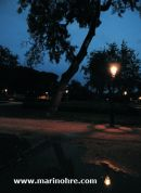 AutumnIV