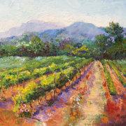 Spring Vineyard in Provence