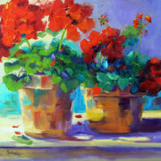 Summer Essence, sunny geraniums