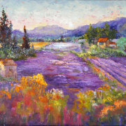 Wonderful Lavender Provence