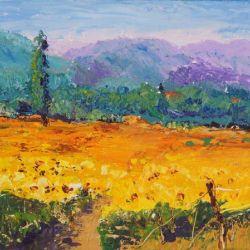 Sunshine in Provence