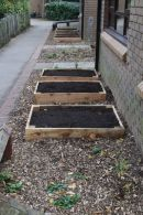 Vegetable plot project complete