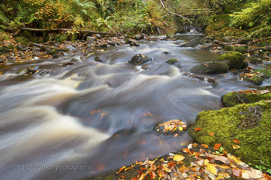 Golspie Burn in autumn