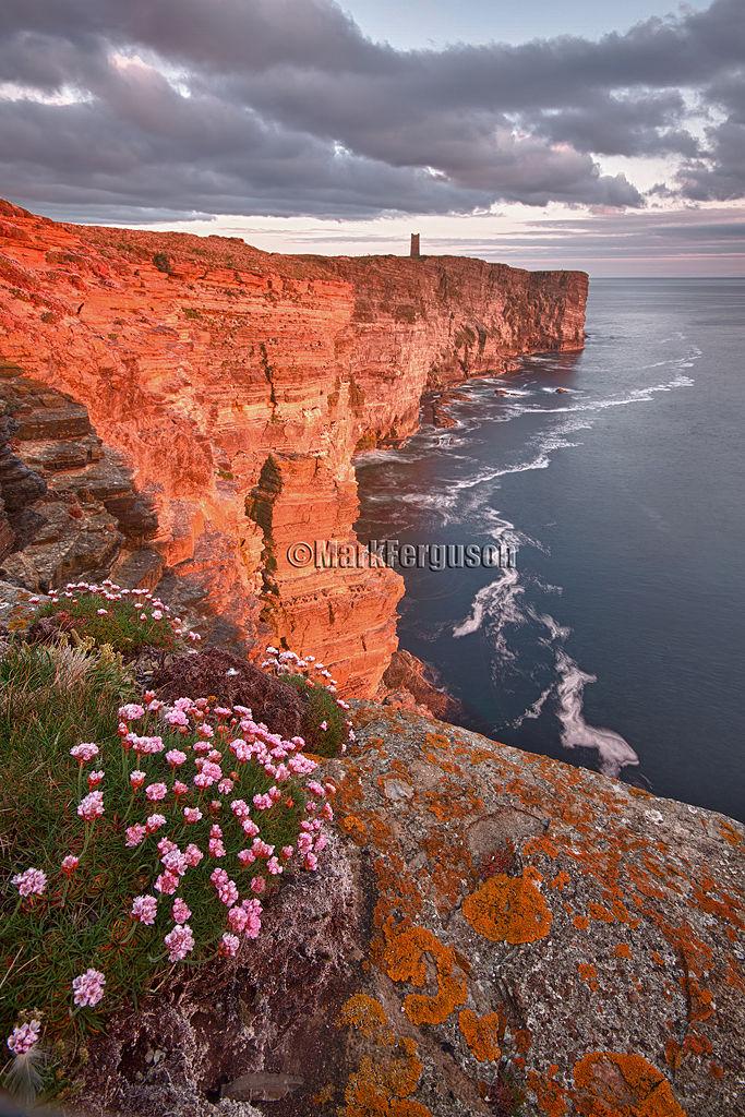 Marwick cliffs