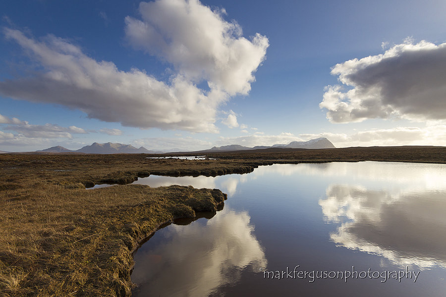 Ben Loyal and Ben Hope