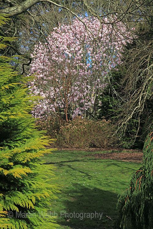 12255A Trelissick Gardens