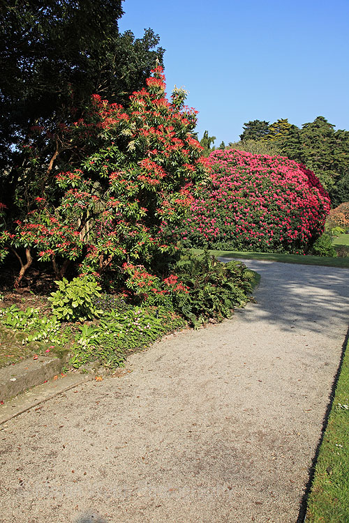 12710A Trelissick Gardens