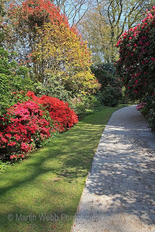 16120A Trelissick Gardens
