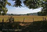 3601A Near Ivinghoe Beacon