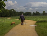 Man and  His Dog, Richmond Park