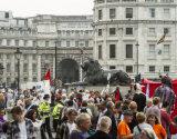 NHS Demo Trafalgar Square