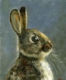"Rabbit8"" x 10""Oil"