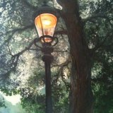 Lantern of Summer Eve
