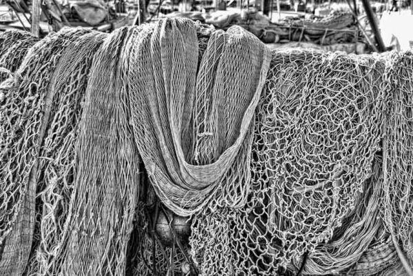 Ropes & Nets 3