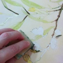 Marion removing masking fluid