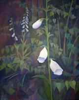 Foxgloves garden