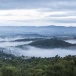 Dawn Mist over Aberfoyle - 2