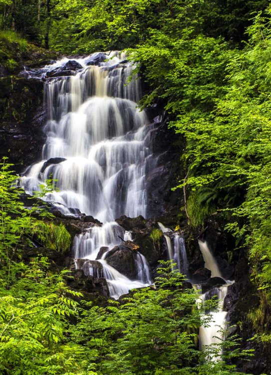 The Falls of the Little Fawn