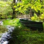 Loch Ard narrows