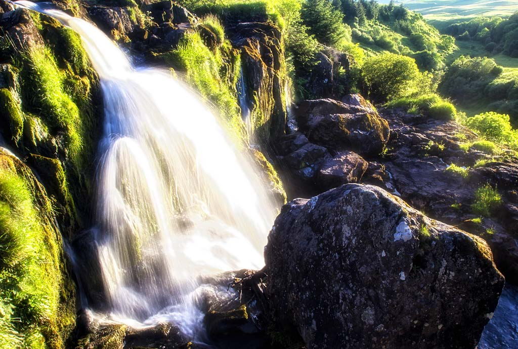 Loup of Fintry - 2