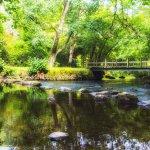 Milton near Loch Ard