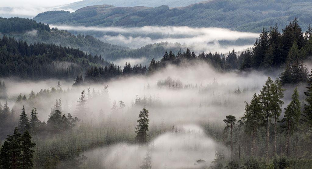 Mist over Trossachs - 1