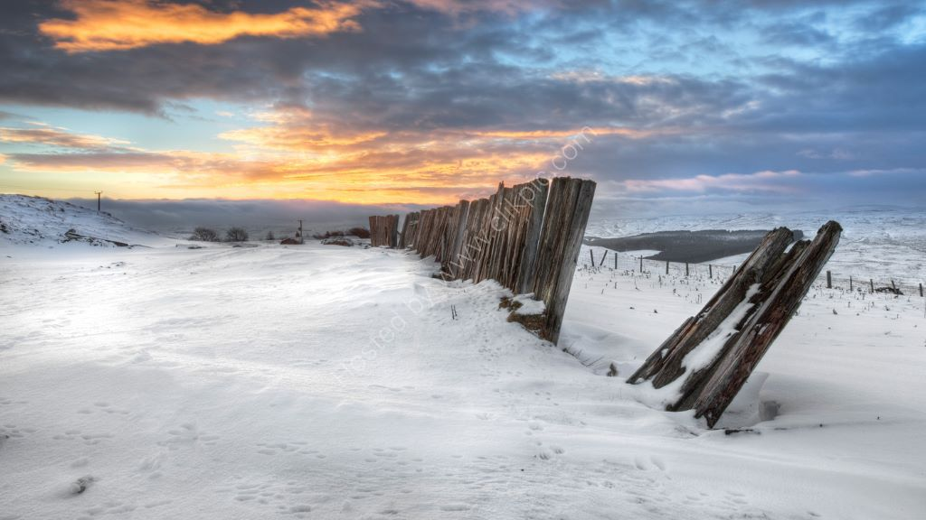 The Old Fence in Winter
