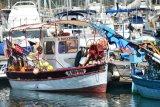 Fisherbaot in Porquerolles (France)