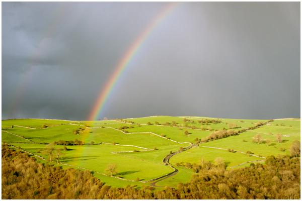 Rainbow larkstone lane