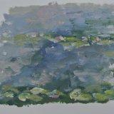 Practice copy of Waterlilies