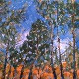 Luberon Quarry Pines