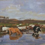 Boudin's Normandy cows